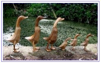 wooden ducks